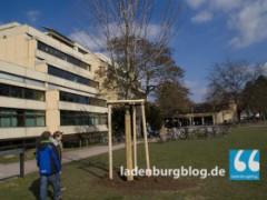 Sanierung des Hauptgebäudes des Carl-Benz-Gymnasiums